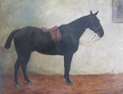 Large Oil on Canvas of a Saddled Dark Bay Horse in a Stable, Signed Margaret Collyer, 1912