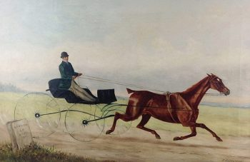 Ginger the Cabber, on the London to Brighton Run, Edward Garroway, 1882